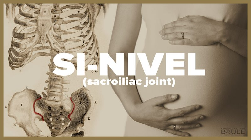 SI-NIVEL (sacroiliac joint)